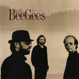 Still waters / Bee Gees | The Bee Gees